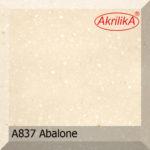 a837_abalone